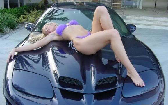 Sexy Girl & Trans Am Blue WS6